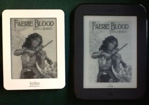 Kobo and Nook Side by Side