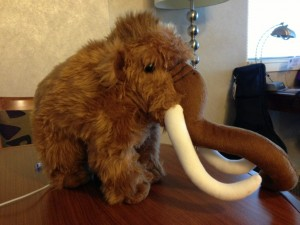 Name This Mammoth!