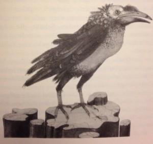 Röac the Raven
