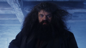 Hagrid, Large and Hairy